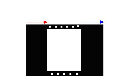 technique_photo_6